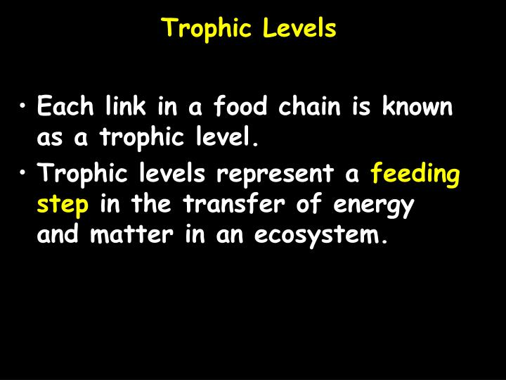 Trophic Levels