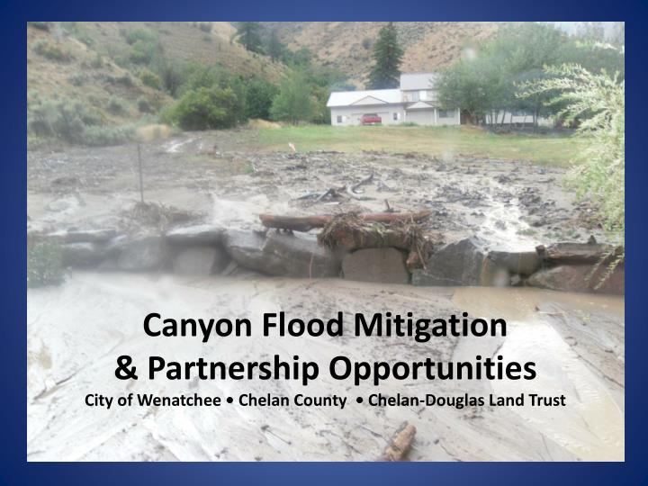 Canyon Flood Mitigation