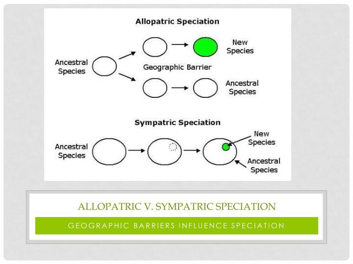 Allopatric V. sympatric speciation