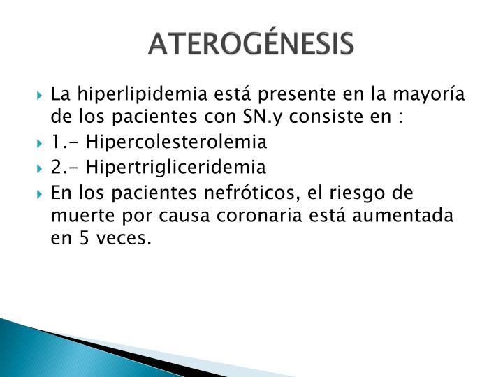 ATEROGÉNESIS