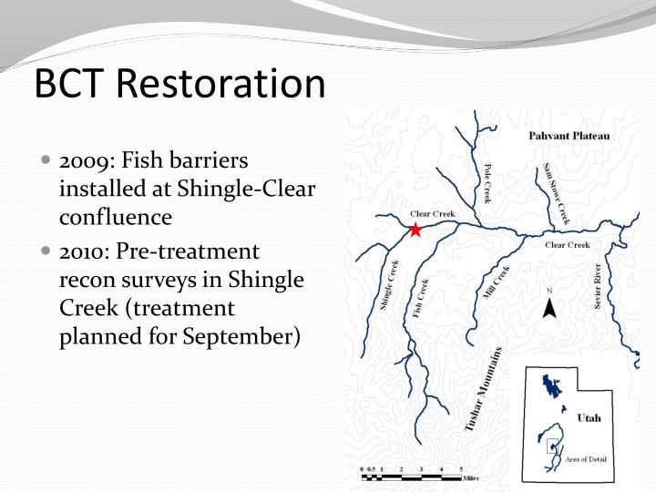 BCT Restoration