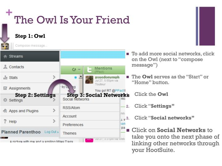 The Owl Is Your Friend