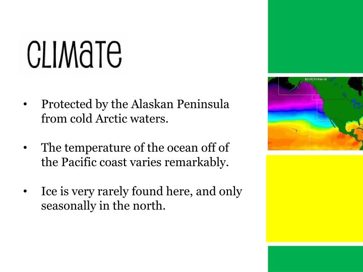 Protected by the Alaskan Peninsula from cold Arctic waters.