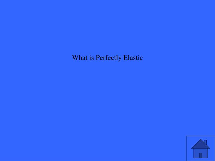 What is Perfectly Elastic