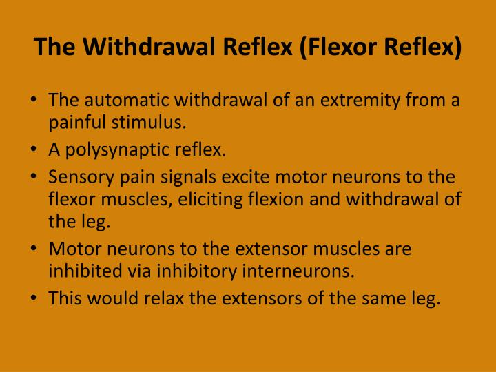 The Withdrawal Reflex (Flexor Reflex)