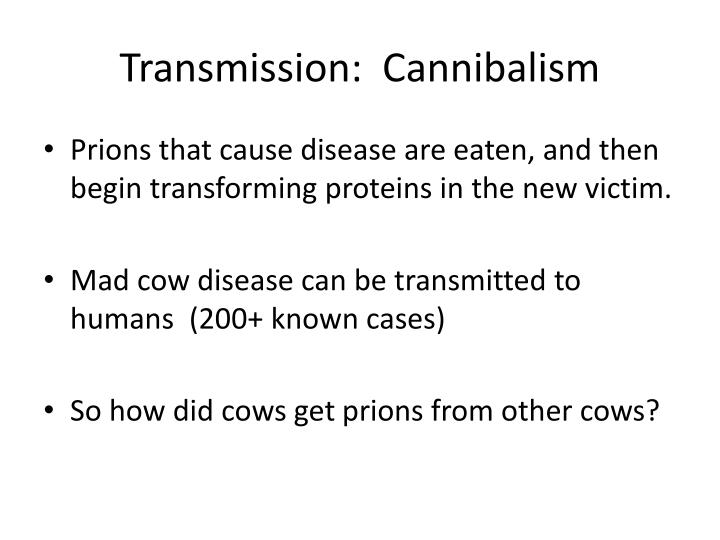 Transmission:  Cannibalism