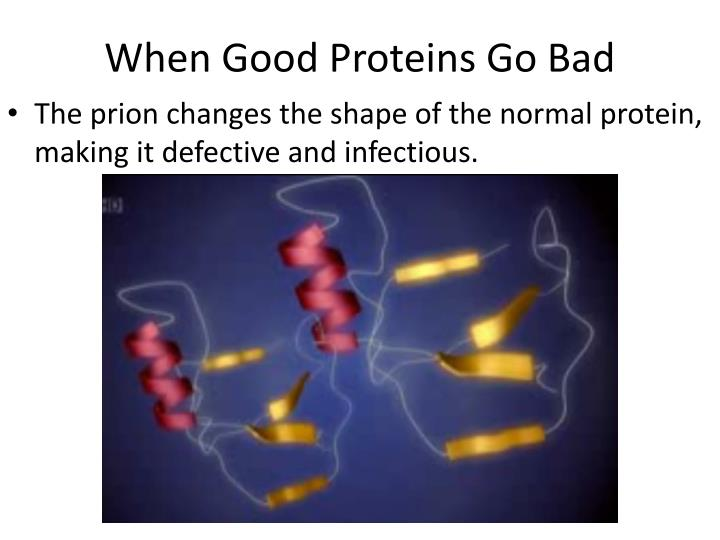 When Good Proteins Go Bad