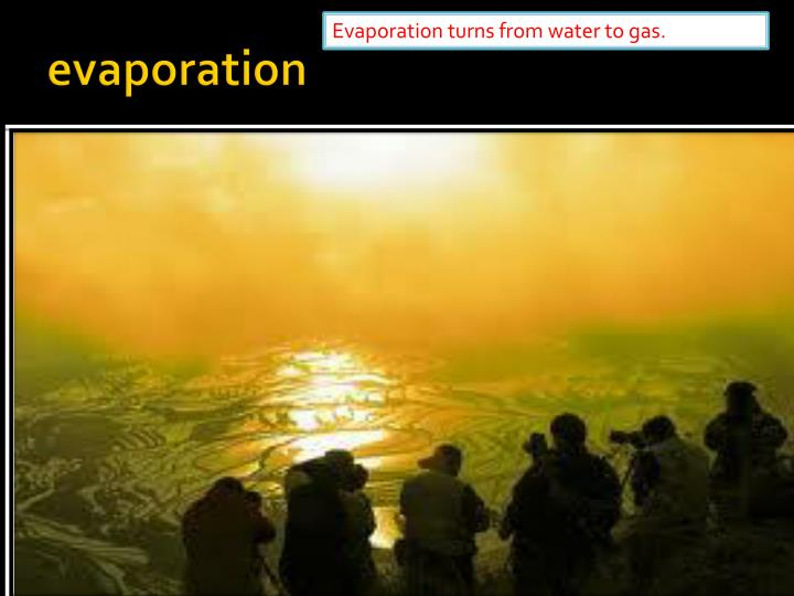 Evaporation turns from water to gas.