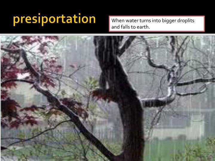 presiportation