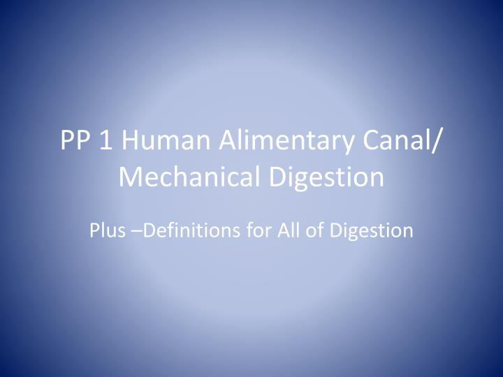 Pp 1 human alimentary canal mechanical digestion