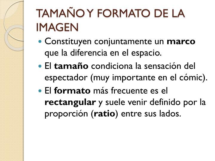 TAMAÑO Y FORMATO DE LA IMAGEN