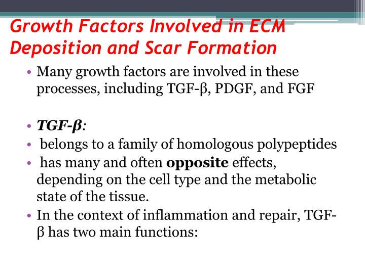 Growth Factors Involved in ECM Deposition and Scar Formation