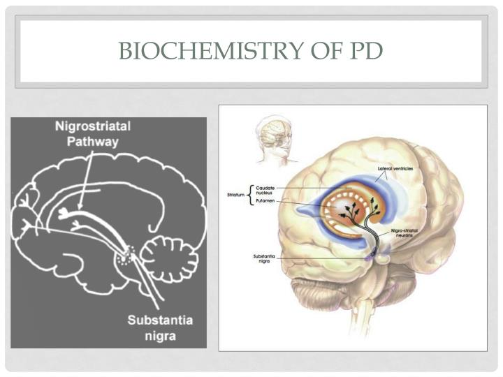 Biochemistry of PD