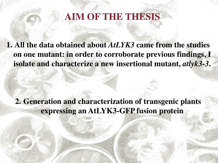 AIM OF THE THESIS