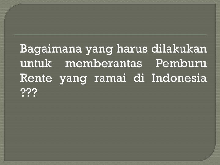 Bagaimana yang harus dilakukan untuk memberantas Pemburu Rente yang ramai di Indonesia ???