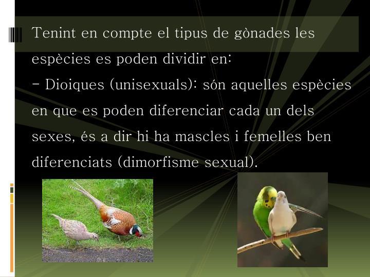 Tenint en compte el tipus de gònades les espècies es poden dividir en: