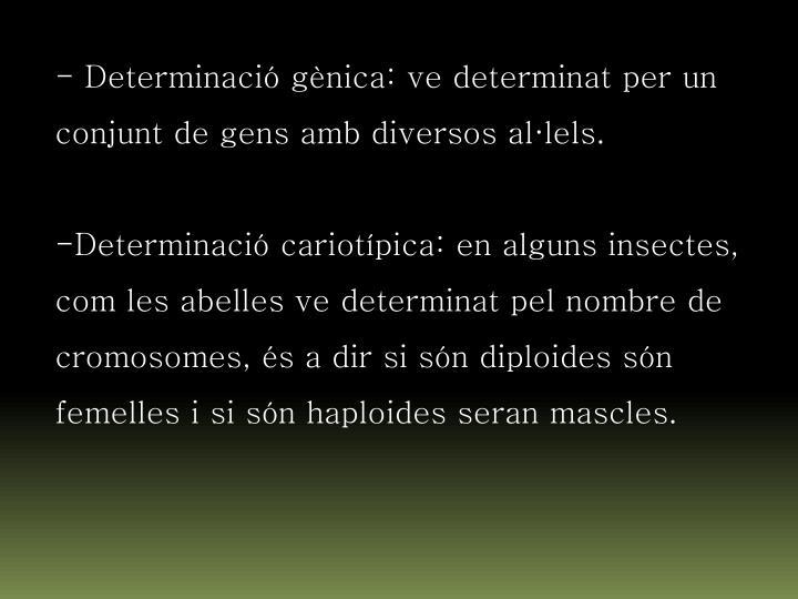 - Determinació gènica: ve determinat per un conjunt de gens amb diversos al·lels.