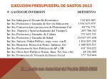 ejecucion presupuestal de gastos 20132