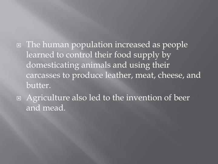 The human population increased as people learned to control their food supply by domesticating animals and using their carcasses to produce leather, meat, cheese, and butter.
