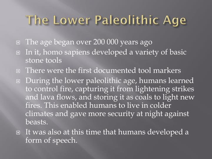 The lower paleolithic age