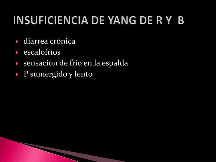 INSUFICIENCIA DE YANG DE R Y  B