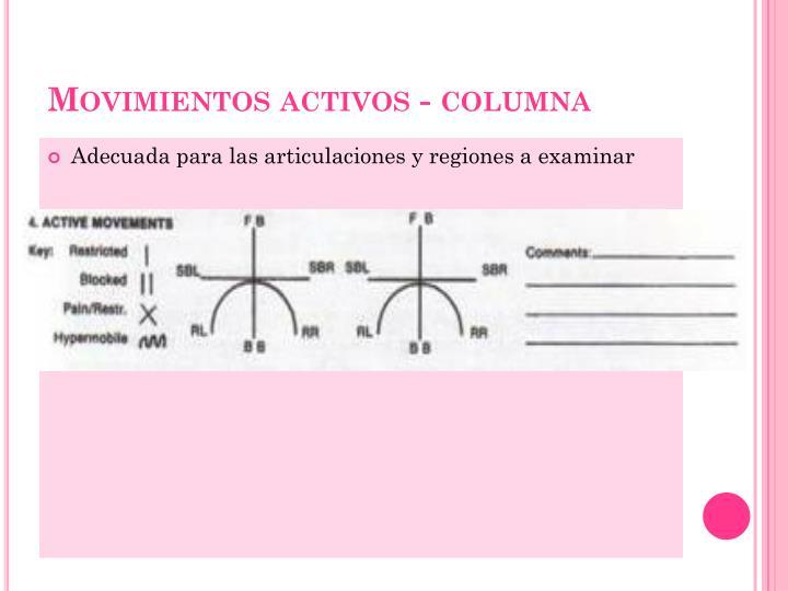Movimientos activos - columna