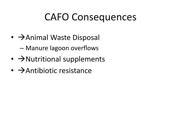 CAFO Consequences