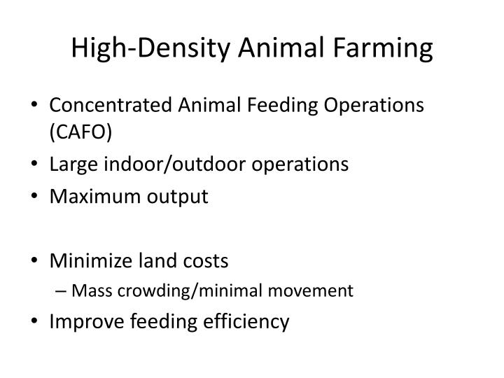 High density animal farming