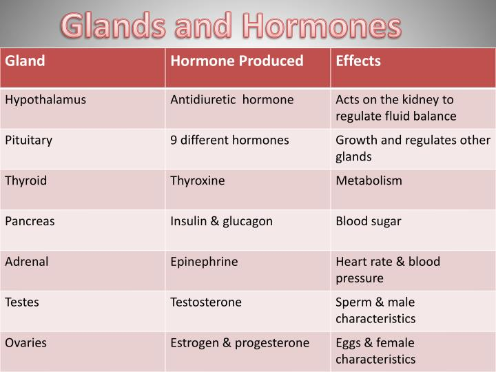 Glands and Hormones