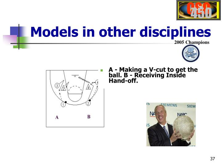 Models in other disciplines
