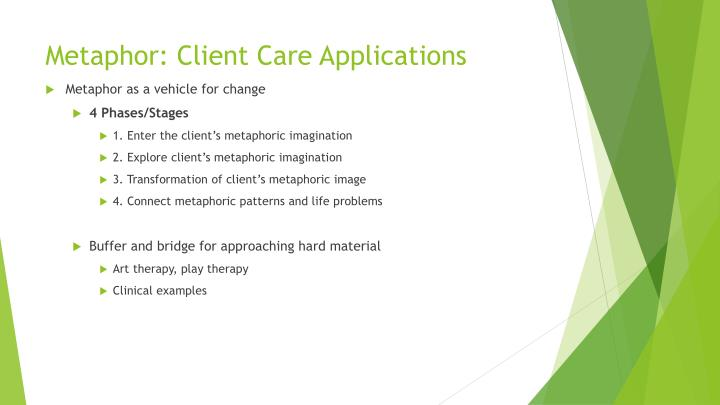 Metaphor: Client Care Applications