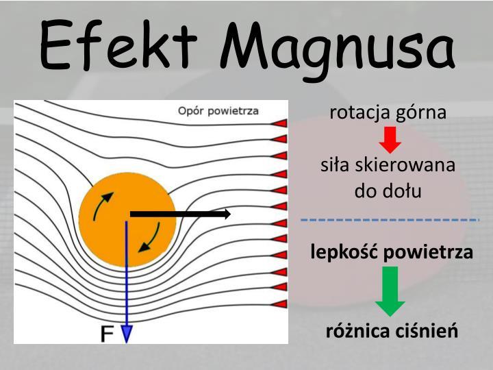 Efekt Magnusa