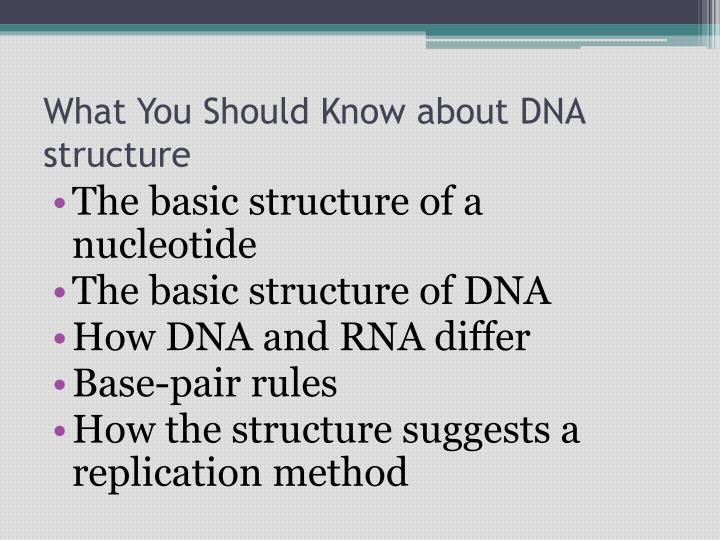 What You Should Know about DNA structure