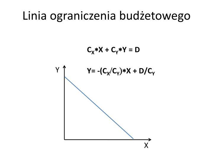 Linia ograniczenia budżetowego