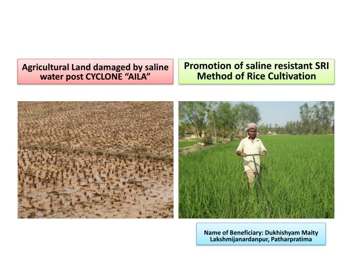 "Agricultural Land damaged by saline water post CYCLONE ""AILA"""