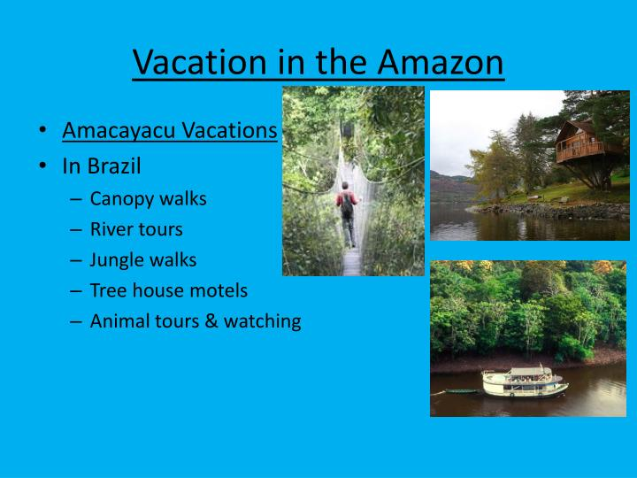 Vacation in the Amazon