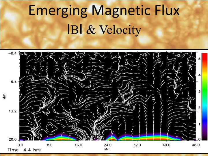 Emerging Magnetic Flux