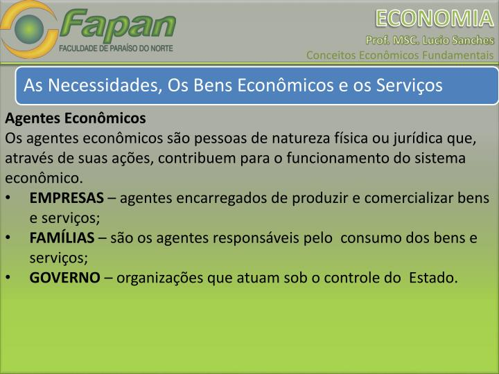Agentes Econômicos
