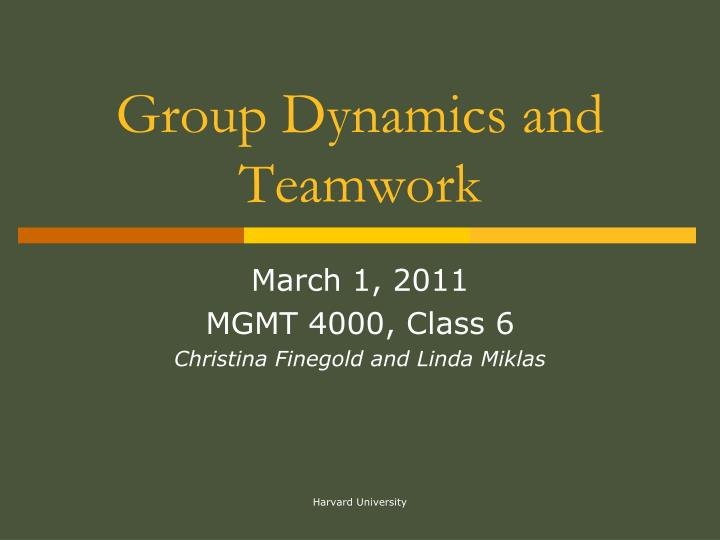 group dynamics and team building essay