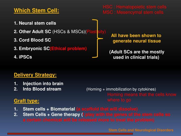 HSC : Hematopoietic stem cells