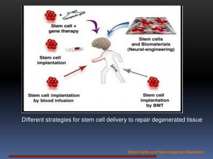 Different strategies for stem cell delivery to repair degenerated tissue