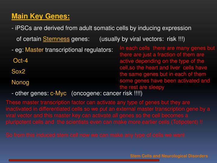 Main Key Genes: