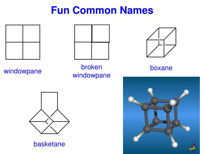 Fun Common Names