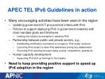apec tel ipv6 guidelines in action
