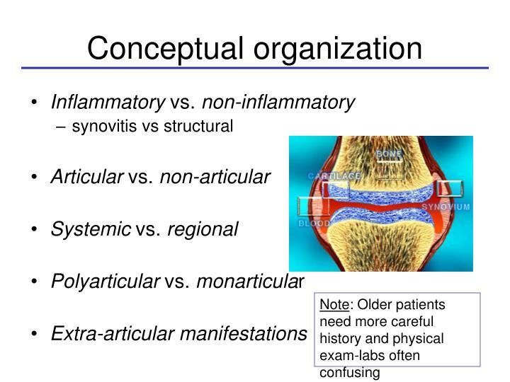 Conceptual organization