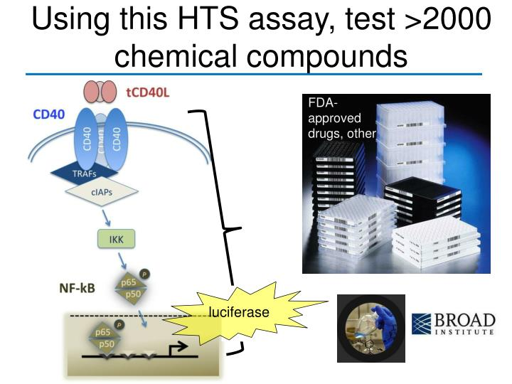 Using this HTS assay, test >2000 chemical compounds