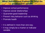what self esteem cannot do and we predicted it would