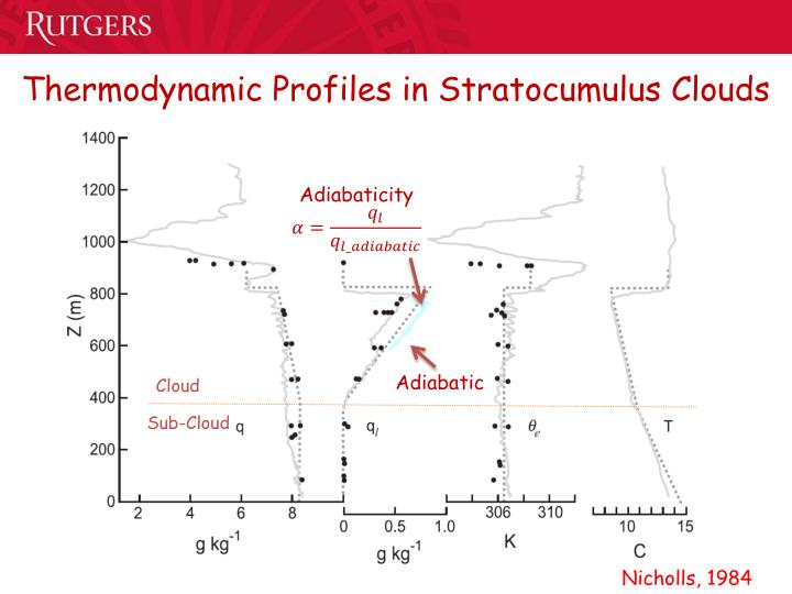 Thermodynamic Profiles in Stratocumulus Clouds