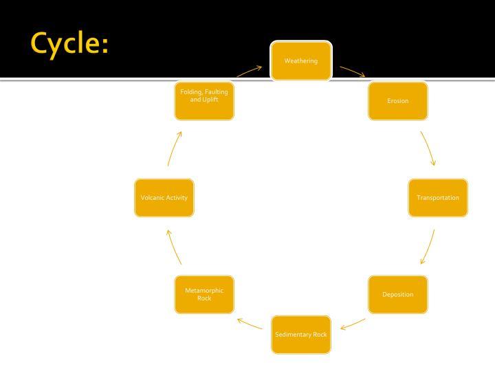 Cycle: