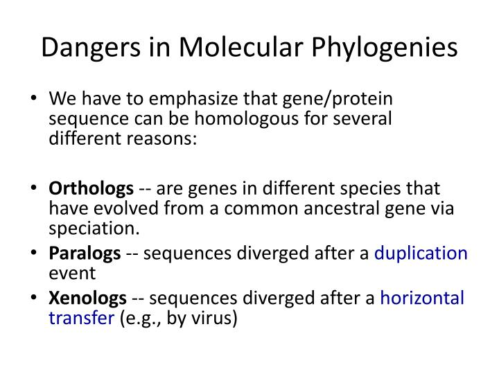 Dangers in Molecular Phylogenies